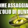 Come si assaggia l'Olio d'Oliva