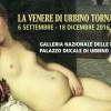 Venere di Urbino: per chi venne dipinta ?