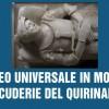 Il Museo Universale in mostra alle Scuderie del Quirinale