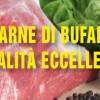 Carne di bufala: qualità eccellenti
