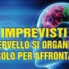 Imprevisti: il cervello si organizza da solo per affrontarli