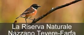 La Riserva Naturale Nazzano Tevere-Farfa
