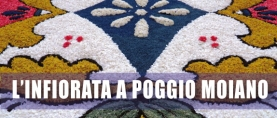 L'infiorata 2013 a Poggio Moiano