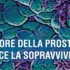 Tumore della prostata: aumenta la sopravvivenza