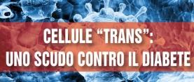 """Diabete di tipo 2 : protezione dalle Cellule """"Trans"""""""