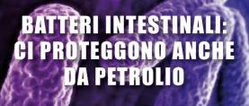 Batteri intestinali: ci proteggono anche dal petrolio