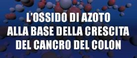 L'ossido di azoto alla base della crescita del cancro del colon