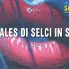 I murales di Selci in Sabina