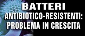 Batteri antibiotico-resistenti: problema in crescita