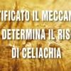 Identificato il meccanismo che determina il rischio di celiachia