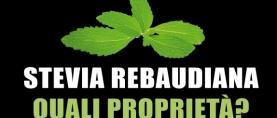 Stevia rebaudiana: quali sono le proprietà?