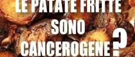 Patate fritte: sono cancerogene ?