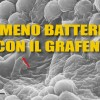 Grafene e granchi contro i batteri