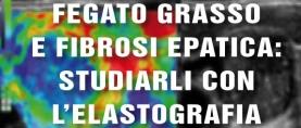 Fegato grasso e fibrosi epatica: studiarli con l'elastografia