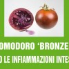 Pomodoro 'bronzeo' contro le infiammazioni intestinali