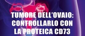 Tumore dell'Ovaio: controllarlo con la proteica CD73
