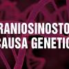 Craniosinostosi: la causa è genetica