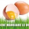 Fa bene mangiare le uova?