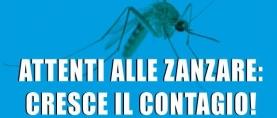 Attenti alle zanzare: cresce il contagio