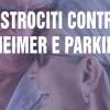Astrociti contro Alzheimer e Parkinson