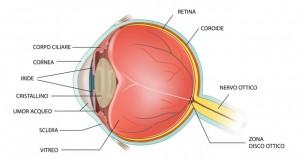 occhio glaucoma