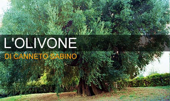 Olivone di Canneto Sabino: storia e visita
