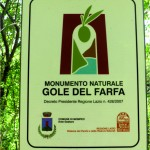 CARTELLO_MONUMENTO_FARFA