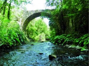 fiume farfa gole del farfa ponte medievale sul farfa