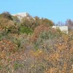 1 Castello di Castiglione dalla Strada di Casoli