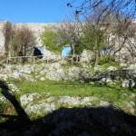 5 Castello di Castiglione Palombara