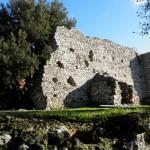 9 Resti Mastio Castello di Castiglione Palombara
