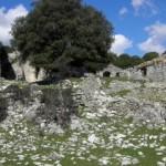 Rocca di Castiglione di Cottanello