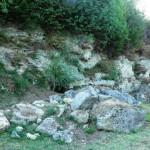 Montenero - Località Pago - Banco di roccia calcarea