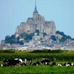 Mont Saint Michel - dalla Campagna