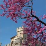 castello di nerola