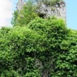 S Maria di Vallebona - Resti del Castrum