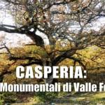 cerro valle ferrara casperia