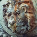 Moricone - Fontana - particolare