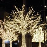Innsbruck - Gli Alberi di Natale