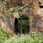 Ponte Nomentano - dal Parco Aniene - 2