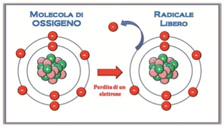 radicali liberi stress ossidativo dieta