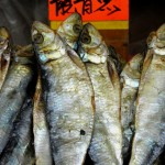 Chinatown Mott Str Market 3