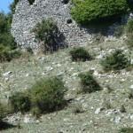 Montefalco Sabina