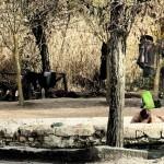 San Casciano Bagni - Le Vasche 2