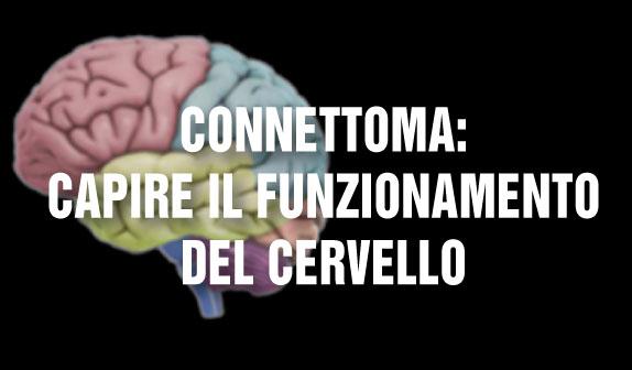 Connettoma: capire il funzionamento del cervello
