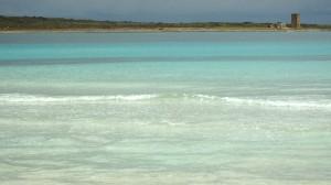 sardegna stintino spiaggia della pelosa