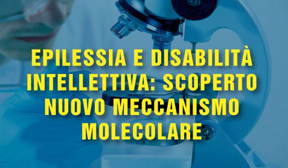 Epilessia e disabilità intellettiva: scoperto nuovo meccanismo molecolare