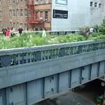 New York High Line Park West side Manhattan