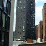 New York - High Line Park 8