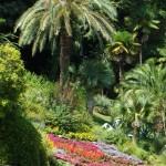 lago-como-villa-carlotta-giardini-1